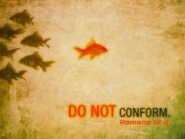 donotconform